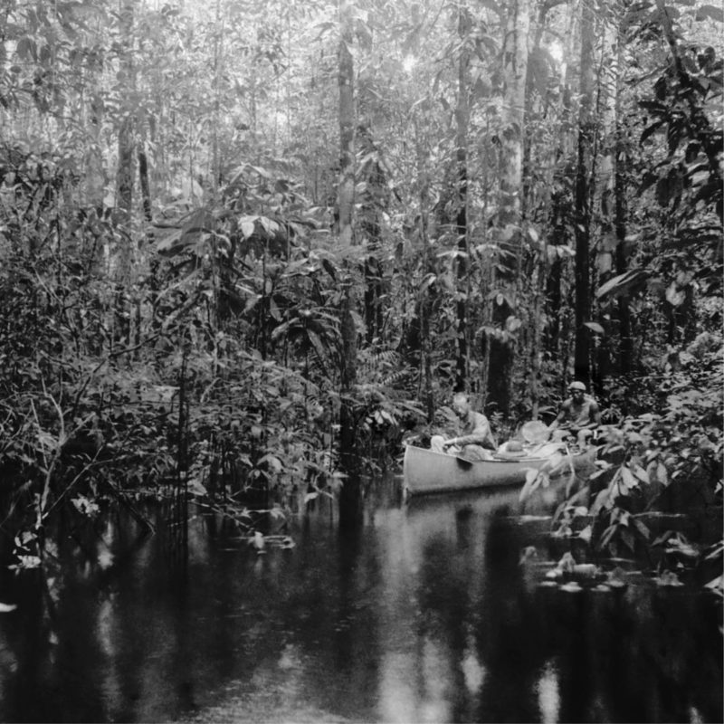 lost amazon traveling exhibition photography
